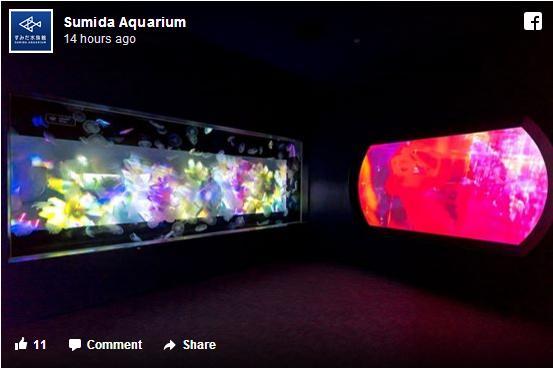 すみだ水族館のクラゲ水槽が「蜷川実花ワールド」に / 幻想的で妖艶な世界にどっぷり浸ろう♪