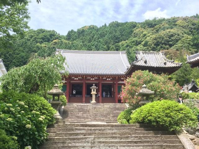 「お寺」と「神社」ってどう見分けるの? 仏像マニアの視点で4つのポイントを紹介します