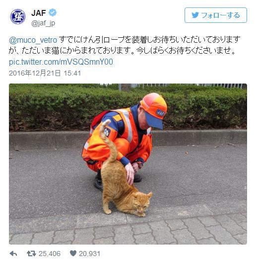 【華麗なるギャグ返し】雪にハマって動けない柴犬がJAFに救助求めた結果 → 「ただいま猫にからまれております」
