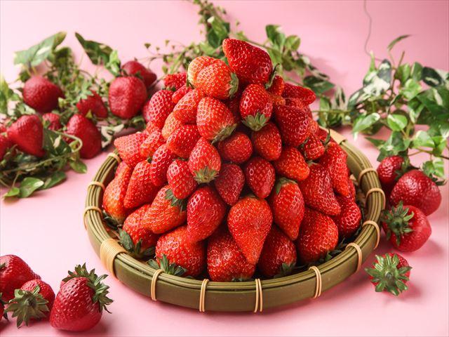 【超絶いちご】東京・上野のレストランで「あまおう祭り」開催!! デザートもサラダもいちご、天ぷらまでいちごだと!?
