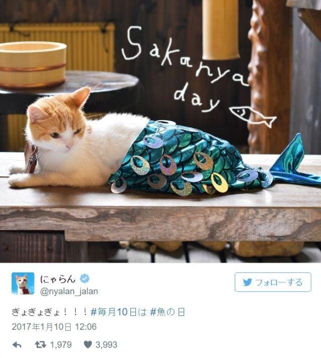 """じゃらんのマスコットキャラ """"にゃらん"""" が人魚姫ならぬ「ニャン魚姫」に!! …しかし「魚に食べられている」という声も"""