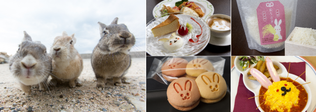 広島県にあるウサギだらけの楽園・大久野島(別名うさぎ島)がさらにパワーアップ! カフェやホテルがウサギ感満載に