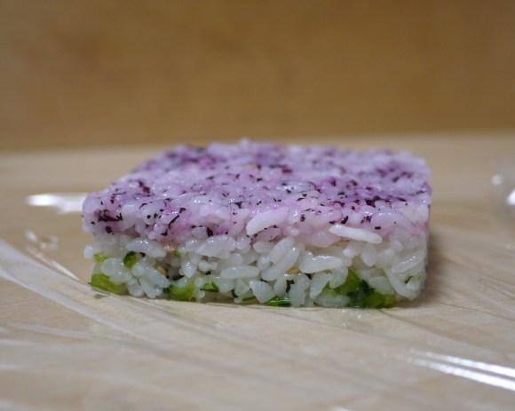 mosaiczushi8