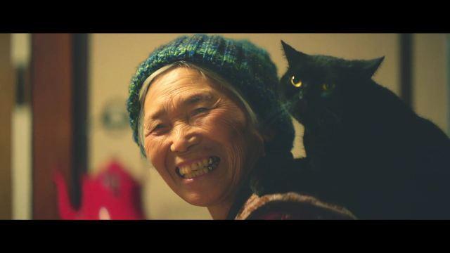 ニャンコ2匹がひとりぼっちのおばあさんのために猛勉強!! 深夜の徹夜も危険な訓練も必死にはげむ理由とは?