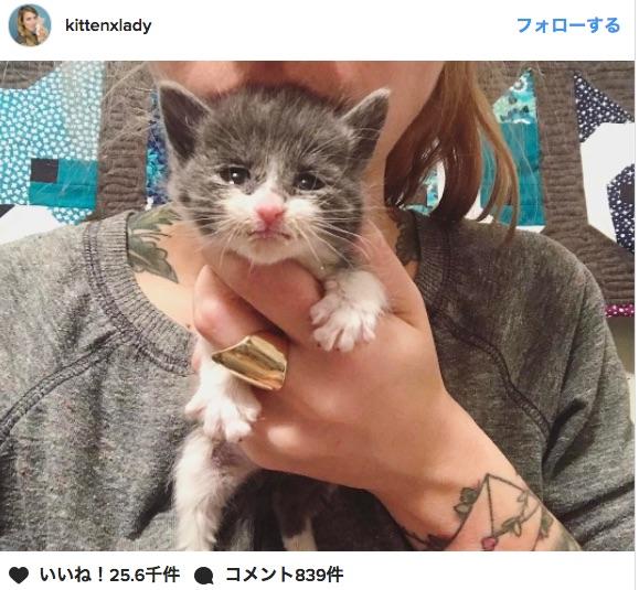 母親に育児放棄された小さすぎる子猫を保護….スタッフの看病で7日後に奇跡的に快復!