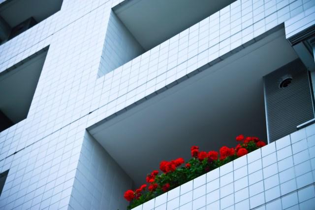 【女性のひとり暮らし】防犯対策で重視するのは「2階以上」「TVモニターつきインターホン」/実体験から大切だと思うのは「周辺の環境」