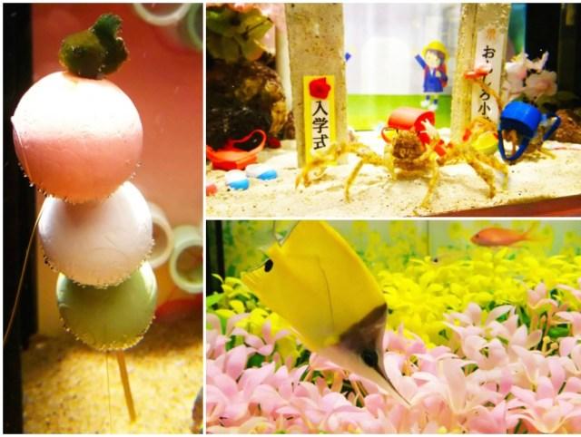 横浜中華街「ヨコハマおもしろ水族館・赤ちゃん水族館」が春色に♪ 「花満開水槽」「花よりダンゴ水槽」などお楽しみ盛りだくさん