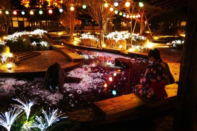新感覚のお花見がお台場「大江戸温泉物語」に…! 足湯につかりながら幻想的な空間で桜を楽しめるんだって★