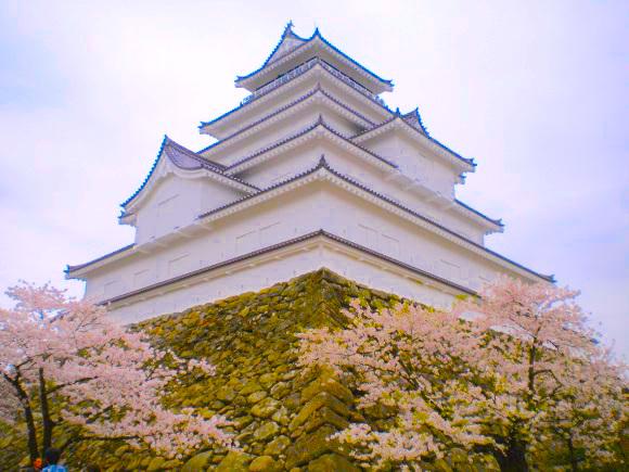 お城が「桜の名所」になった悲しい理由とは? そもそもお城に樹木はなかったんだって!