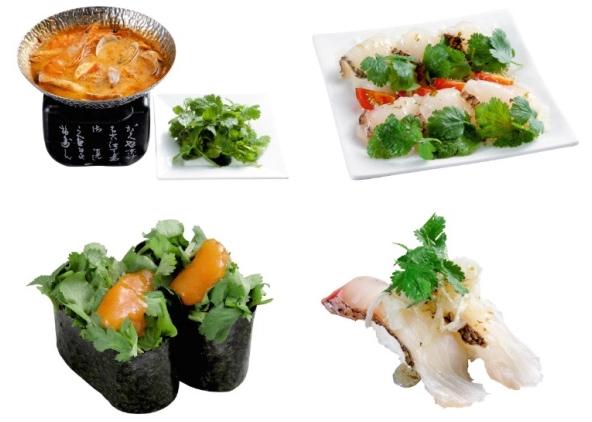 回転寿司チェーン店「がってん寿司」が謎のパクチーメニュー押し!! 「トムヤムクン」や「パクチー軍艦」など…すし屋なのにナゼここまで攻めたのか聞いてみた
