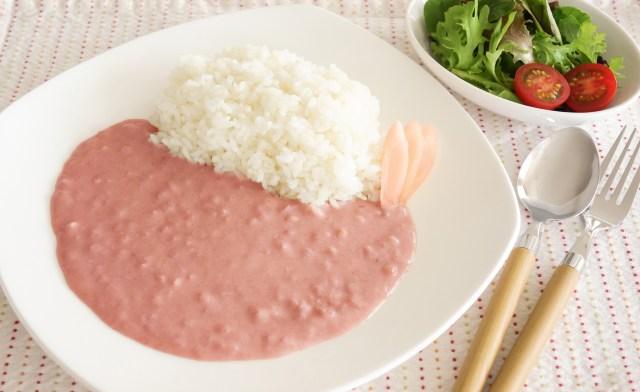 【またお前か】あっと驚くピンクのカレーが「岩下の新生姜」から登場!! 具材は岩下の新生姜だけという潔さ