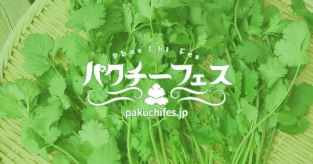パクチニストならぜ~ったい行っときたい! 全メニューがパクチーマシマシの「パクチーフェス」が歌舞伎町で開催されるって
