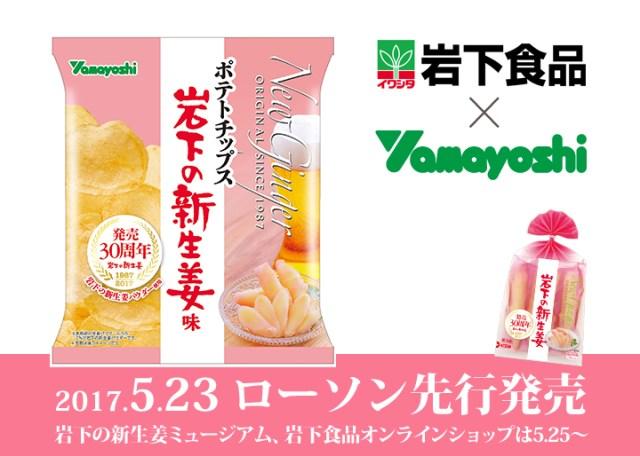 【本日発売】「岩下の新生姜」がポテトチップスになったよ! さわやかな香りと酸味、うま味を楽しめるそうです♪