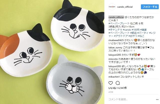 【100均】キャンドゥのネコ柄ペーパープレートがめちゃんこ可愛い! 愛らしい表情にピョコンとした耳…使うのがもったいないっ!!