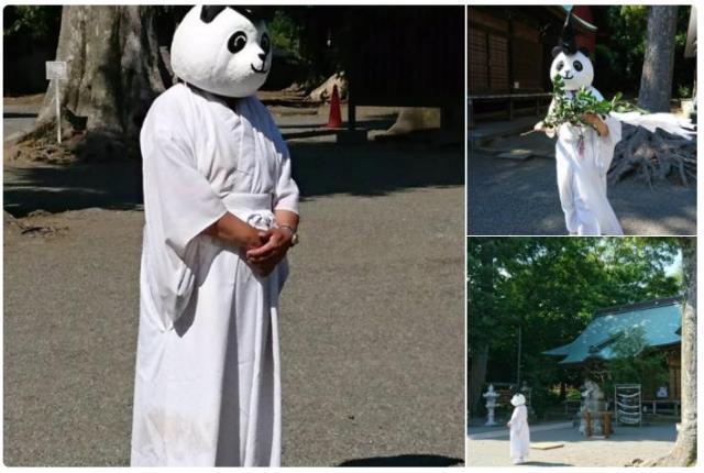 神社に「パンダの宮司」がいるですって…? 神奈川県の「有鹿神社」がシュールすぎる取り組みをしています