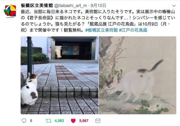 """「見せてほしいニャ…」板橋区立美術館に """"展示中の作品とそっくりの猫"""" がやってくるらしい → ホンマや!!!!!"""