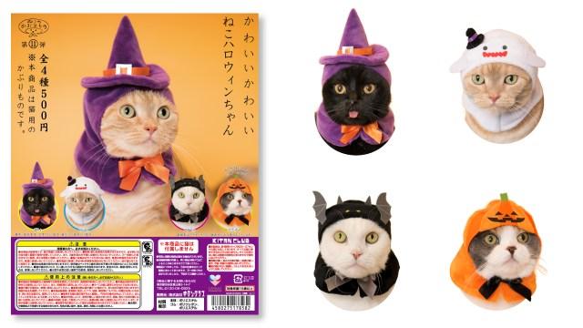 ねこのかぶりもの「かわいい かわいい ねこハロウィン」が最高にキュート☆ かぶるだけでニャンコが魔女やかぼちゃに大変身