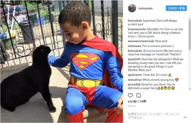 気難しい野良猫たちが心を許すスーパーヒーロー「キャットマン」はまだ5歳! 愛情たっぷりの接し方に世界中がほっこり
