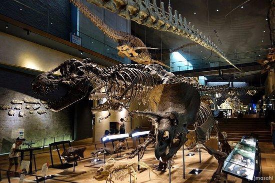 「日本で人気の博物館・美術館ランキング」が興味深い! 「サムライミュージアム」「いのちのたび博物館」などが世界の旅行者に人気