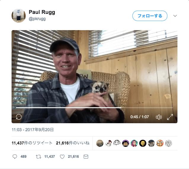 「犬を撫でることは、リラックスできる行為」とかなんとか言いながら…犬に噛まれまくる男性が心配