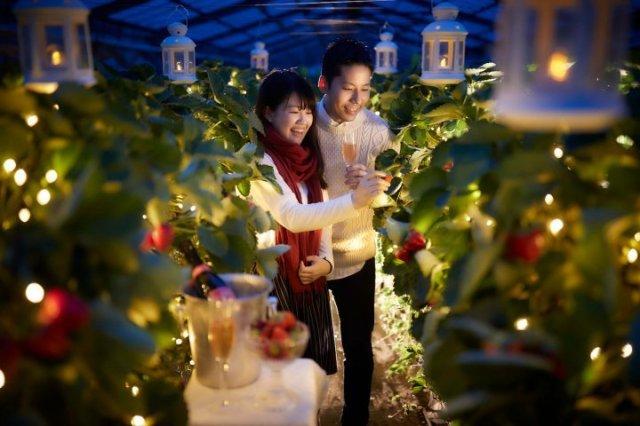 一日一組限定の超絶ロマンチックなバレンタインイベント! 二人きりで夜のイチゴ狩りを満喫できる「ナイト・ストロベリー・デート」開催