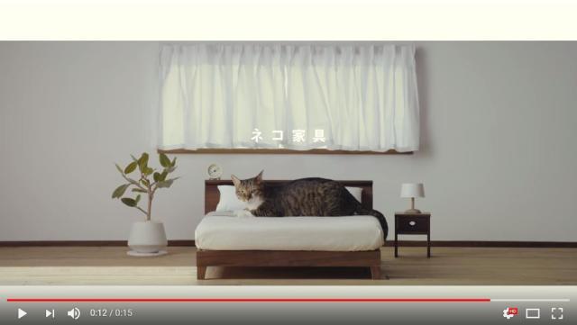 【完成度高すぎ】「ネコ家具できました」のCMにグッとくるにゃん♪ 人間用かと思いきや猫サイズでびっくり