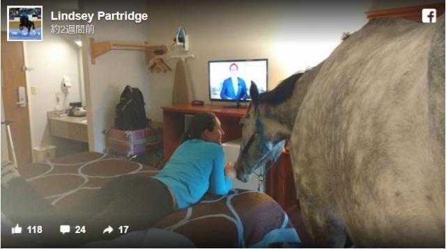 ペットOKのホテルに馬を連れていってみたところ…なんとチェックインできた! お部屋で一緒にテレビ鑑賞できました