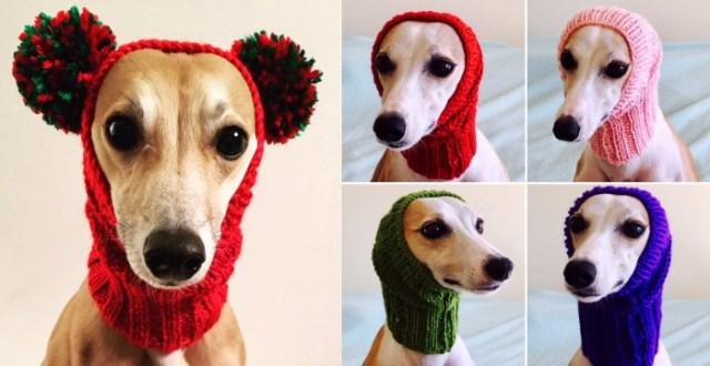 犬用ニット専門店のアイテムが可愛らしい / まるでミッキーみたいに変身できる帽子もありました
