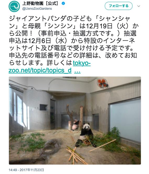 【本日から】上野動物園の赤ちゃんパンダに会うための申し込みがスタート! 1月末までは抽選方式で会うことができます