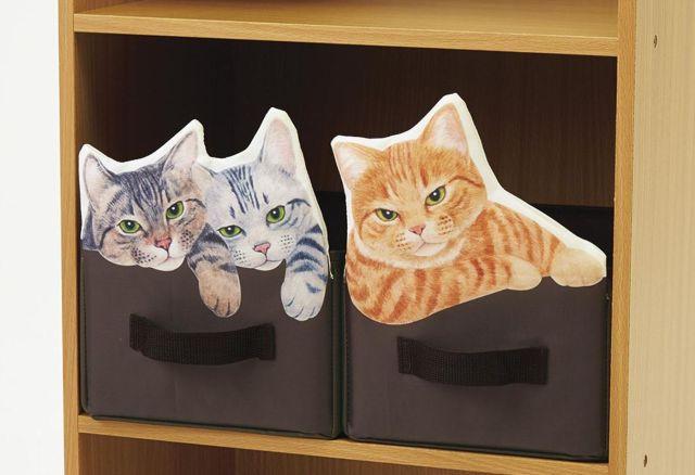 めっちゃこっち見てくる…棚の中にニャンコがムギュッ!って収まってるみたいな収納ボックスが発売されました♪