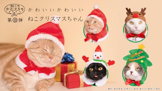 クリスマスっぽく変身した愛猫とホーリーニャイト☆ 「ねこのかぶりもの」シリーズの新作が爆裂かわいいです