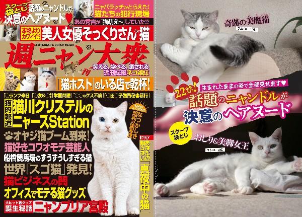 あの『週刊大衆』もついに猫化しちゃって『週ニャン大衆』発売 / 話題のニャンドルがまさかの袋とじグラビアに挑戦ーーーっ!