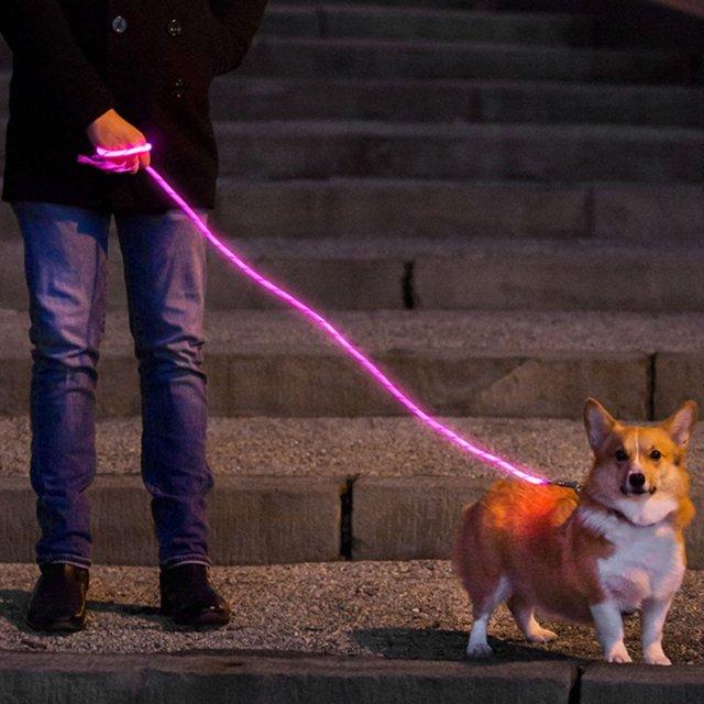 【素敵アイテム】光ファイバーでピッカリ光る「ワンコ用リード」☆ 400m先から見える光で夜のお散歩を安全に