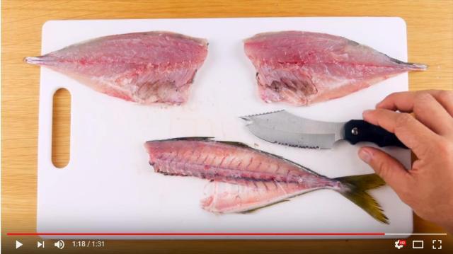 魚を簡単にさばける「サカナイフ」が超便利そう! ウロコ取りから骨を切る刃までついて3枚下ろしがキレイにできるよ