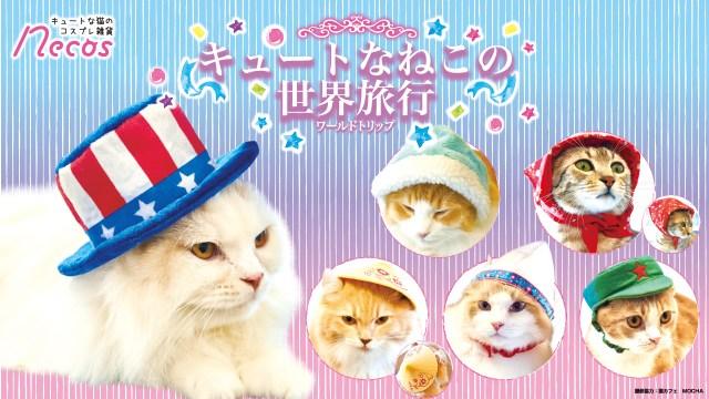 世界各国をイメージした帽子をかぶった猫さまに萌えキュン♡ アメリカ国旗のシルクハットに人民帽、ロシアのほっかむりまで!