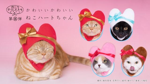 【LOVEの塊】「ねこのかぶりものシリーズ」最新作はハートにゃんこ♡  バレンタインデーにもピッタリなかわゆさです!