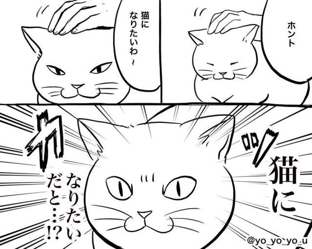 「それでも猫になりたいか!」猫の職場が超ブラックすぎて震える / 顔を押し付けられたりニオイを嗅がれたり…と訴えが止まらないよ!
