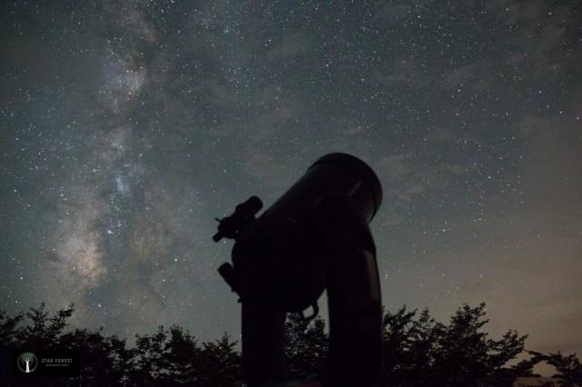 【和歌山】ふるさと納税の返礼品に星空ツアーですって!? 「海辺の熊野古道」で満点の星空と神聖な雰囲気を楽しんで