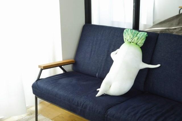 """大根「こっちに来いよ…」と誘ってきそうな """"セクシー大根抱き枕"""" がフェリシモから登場 / 全長115センチもあります"""