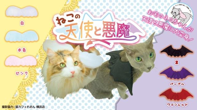 我が家のニャンコが天使と悪魔に大変身しちゃうよ~!! カプセルトイ初の猫コスチュームがたまらんかわいさ♡
