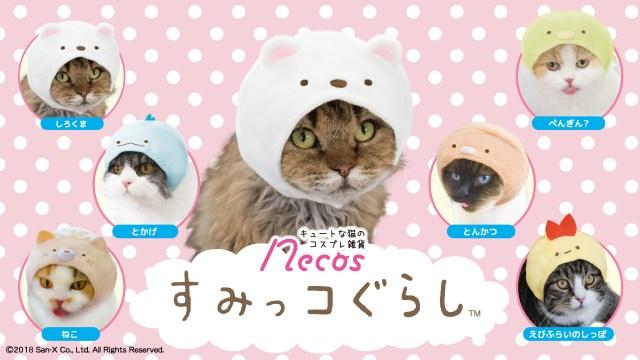「猫」といえば隅、隅といえば「すみっコぐらし」 人気キャラたちが猫さま専用のかぶりものになりました♡