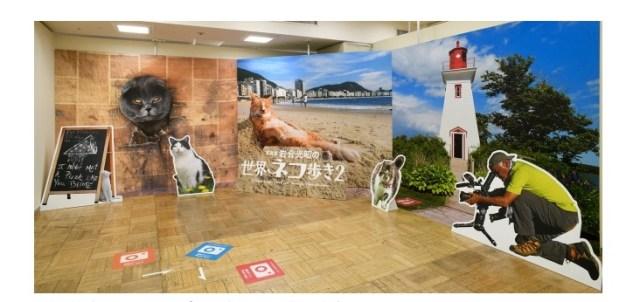 【待ってるにゃ】動物写真家 岩合光昭さんの写真展「岩合光昭の世界ネコ歩き2」開催中! サイン会も開催でご本人に会えちゃうかも♪