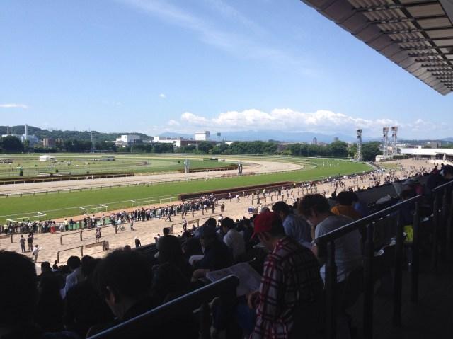 ダービーで初めて競馬に行く女性注目! グルメ、穴場スポットなど「東京競馬場を楽しむ8つのポイント」を紹介するよ!