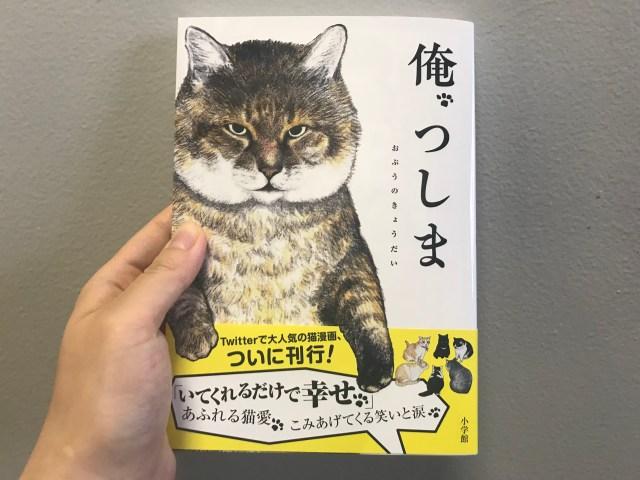 書籍『俺、つしま』はこれから猫を飼いたい人必読…「必ずやってくる愛猫との別れ」や「つしまの元飼い主の話」など大切なことが書かれていました
