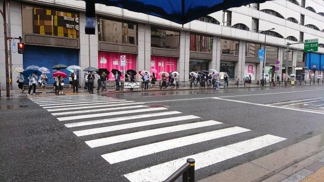 男性は天気関係なく常に「傘」を持ち歩いてる!? 女性は男性の半分のみ…理由は「荷物をできるだけ増やしたくないから」など【6月11日は #傘の日】