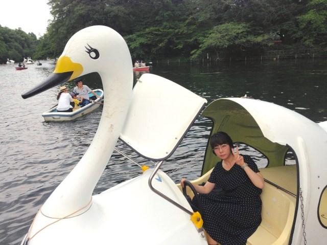 """恋人の聖地「井の頭公園」でひとりスワンボートに乗った結果… """"みにくいアヒルの子"""" 状態になりました"""