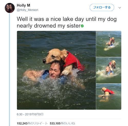 「ひえ〜っ溺れるワン!」犬だからって泳ぎが得意なわけじゃない!? 水遊び中に飼い主さんを湖に沈めてしまったワンコ