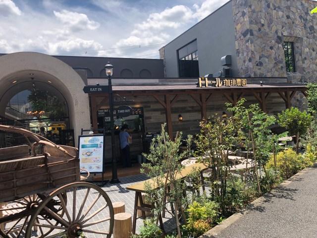 【知ってた?】都内に3つしかないドトールのレア店舗「ドトール珈琲農園」が衝撃の豪華さ! コーヒーはもちろん「カレー」や「グラタン」も美味しいよ