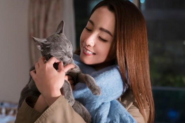 吉沢亮の「猫」演技が罪深い可愛さ! 映画『猫は抱くもの』は物語だけじゃなく演出も出演者も魅力的な世界観です