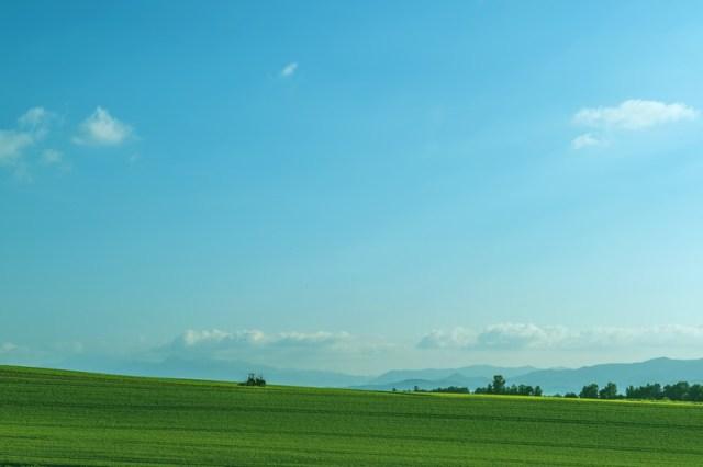 「広い草原は空き地じゃない…」人気の観光地の北海道美瑛町が抱えている深刻な問題が話題になっています